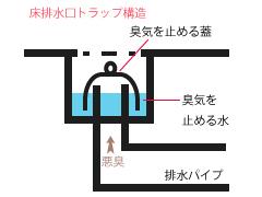 排水溝が臭う原因は?:封水の仕組み