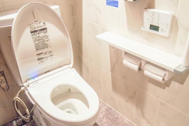 ラバーカップの正しい使い方:トイレの種類を確認(洋式)