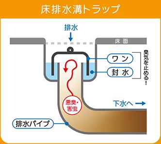 床の排水トラップ