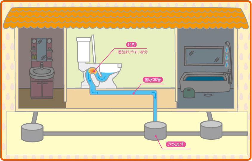 汚水ます、排水管までイラストで確認